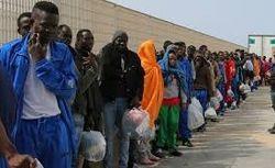 ООН назвала страны-лидеры по количеству приезжих