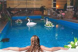Бренды бассейнов «Intex» и «Bestway» самые продаваемые в Интернете в июле 2014г.