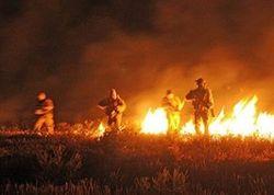 «Азов» стал полком спецназа