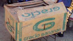 В Самарканде милиция задержала клиента оператора мобильной связи Ucell, сообщившего о бомбе