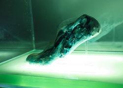 Созданы самовосстанавливающиеся протоклеточные кроссовки