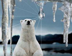 Июнь побил исторические температурные рекорды