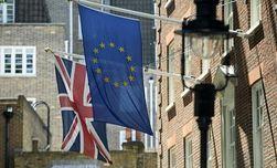Большинство британцев не хочет выхода из Евросоюза