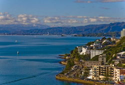 Агентства недвижимости Новой Зеландии провалили PR-политику