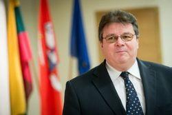 Министр иностранных дел Литвы летит в Киев