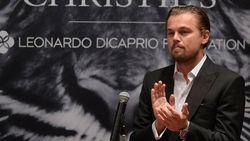 Ди Каприо пожертвовал 3 млн. долларов для сохранения тигров Непала