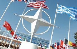 В Эстонии стартовали крупные учения НАТО