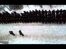 Опубликовано видео, как курсанты Херсонской морской академии поставили на место начальника-сепаратиста