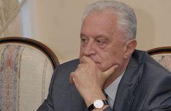 Л.Грач: Посол США вмешивается во внутренние дела Украины