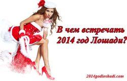 СМИ рассказали, в какой одежде следует встречать 2014 год