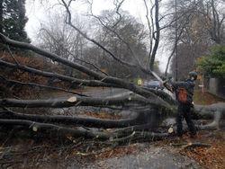 Франция замерла в ожидании прихода урагана Кумейра