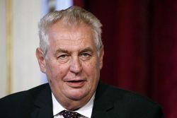 МИД России похвалил президента Чехии Земана за антиамериканскую позицию