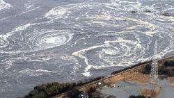 Местные власти не готовы к эвакуации в случае аварий на АЭС в Японии – СМИ