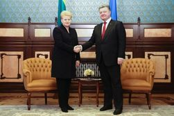 Грибаускайте: ЕС сохраняет единство в вопросе поддержки Украины