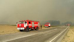 Спасатели не дали пожару в Чернобыльской пуще двинуться в сторону АЭС