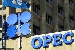 ОПЕК не изменит объемов добычи нефти – иранский министр