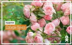 «Одноклассники» рассказали о цветах