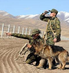 Пограничники препятствуют массовому провозу оружия сепаратистов из РФ