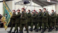Литва приступила к созданию полностью укомплектованных вооруженных сил