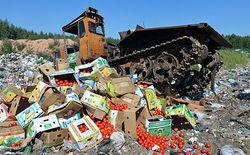 В России хотят запретить санкционные продукты из Беларуси и Казахстана