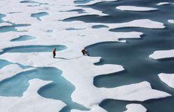 Обама разрешил Shell добывать нефть на Аляске