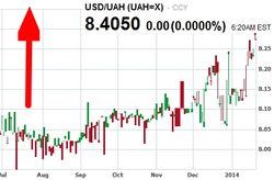 НБУ обвинил политиков в падении курса гривны на Forex