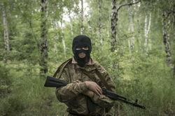 Киев оказался явно не готов к прямому вторжению российской армии – СМИ РФ