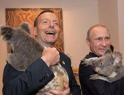 За фотосессию Путина с коалой австралийцы заплатили 20 тысяч долларов США
