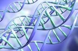 Расшифровать геном можно всего за 1000 долларов