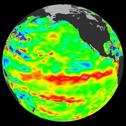 Эль-Ниньо нынешней зимой в Тихом океане не возникнет - метеорологи