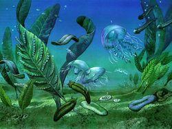 Медузы убивают экосистемы и выделяют углекислый газ