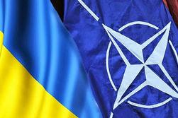 Украинцы на интернет-референдуме готовы вступить в НАТО и ЕС