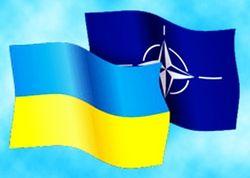 Политологи: договоренность Порошенко со странами НАТО является важным шагом для Украины