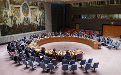 Совбез ООН одобрил проект резолюции по борьбе с боевиками ИГ