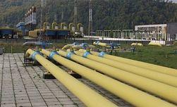 Австрия готова профинансировать поставки газа из РФ в Украину – СМИ