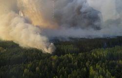 В Чернобыльской пуще удалось полностью ликвидировать пожар – ГСЧС