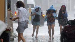 Тайфун «Ногури»: около полумиллиона жителей эвакуированы в Японии