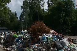 ЕБРР деньгами поможет Львову решить проблему с мусором