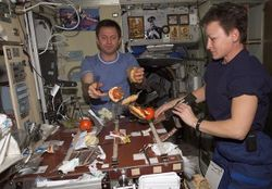 Американцы на МКС выращивают растения для будущих межпланетных полетов