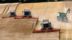 В Украине созданы неравные условия для фермеров и агробаронов – иноСМИ