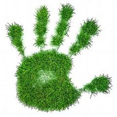 экологическая продукция