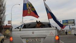 Будни Крыма: Замена шоферских прав, автономеров, SIM-карт, кодов телефонов