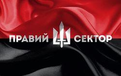 """""""Правый сектор"""" объявил о всеобщем вооружении: общество защитит себя само"""