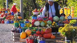В августе в России овощи сильно подешевели