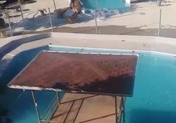 Молния убила 5 человек в турецком аквапарке