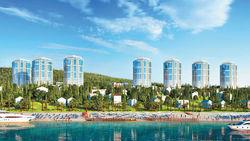 Медведев: После Олимпиады Сочи станет туристическим центром
