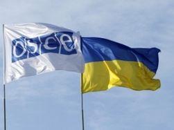 Наблюдатели ОБСЕ раскрыли бедственное положение жителей Широкино
