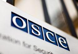 Миссия ОБСЕ пожаловалась на «третью сторону» в зоне АТО