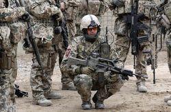 DW: Как относятся депутаты ВР к отправке десантников из Германии?