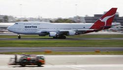 Из-за 20-сантиметровой змеи в Австралии отменили авиарейс